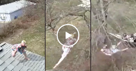 Man leaps off his house into a tree with predictable results (Video)
