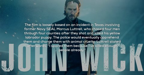 Interesting facts about the film John Wick (18 Photos)