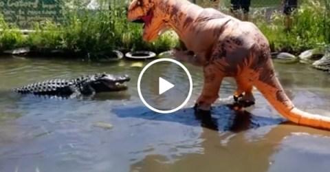 Darwin Award Nominee taunts 500-pound gator dressed as T-Rex (Video)