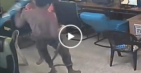 Scary moment snake slithers into internet cafe (Video)