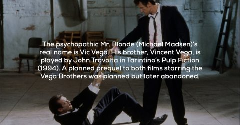 Interesting facts about the crime classic Reservoir Dogs (17 Photos)