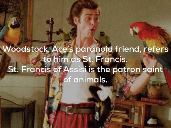 Some fun facts about Ace Ventura: Pet Detective (26 Photos)