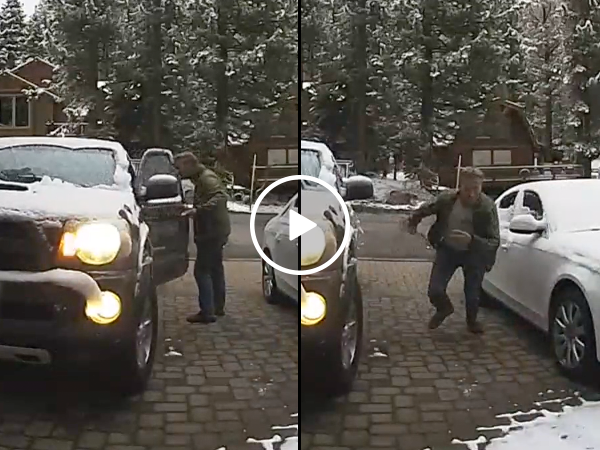 Guy hears his truck horn honking, finds unexpected surprise inside (Video)