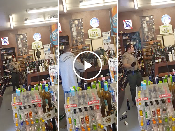 Policeman in liquor store catches a peacock (Video)