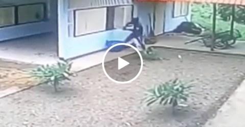 Robber tries to go through window when door is open