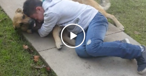 Boy is reunited with his lost dog. THE TEARS ARE REAL! (VIDEO)