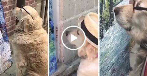 Adorable dog views owner's artwork (Video)