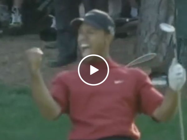 In case you forgot just how awesome Tiger Woods was at golf