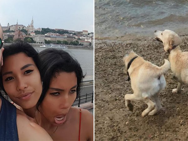 Some of the funniest and weirdest panoramic shot fails (23 Photos)