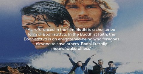 Facts about the film Point Break (18 Photos)