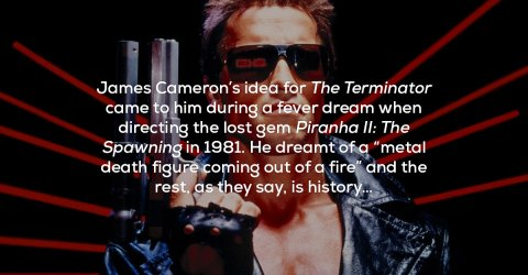 Interesting facts about Arnold Schwarzenegger movies (21 Photos)