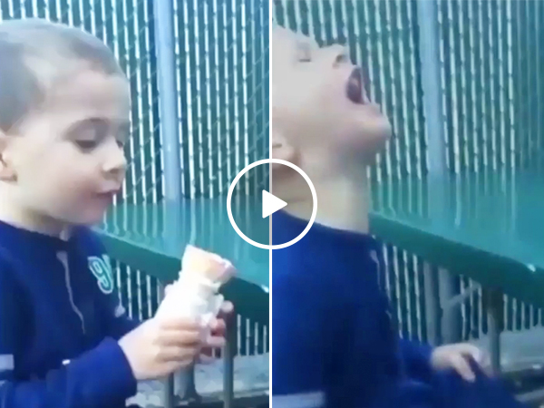 Little boy drops his ice cream, has anguish remixed into songs (Video)