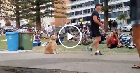 Dog rolls around so owner doesn't take him home