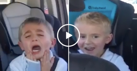 Brothers react to them getting a new sibling