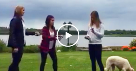 Losing your shotgun virginity can be rough (Video)