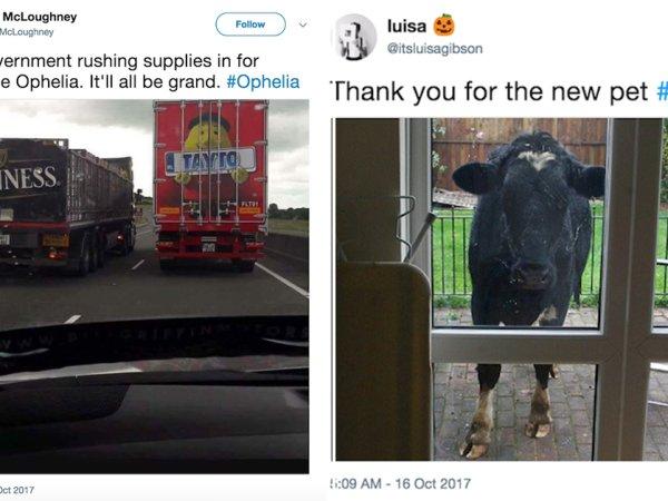 Irish and UK reaction to Storm Ophelia