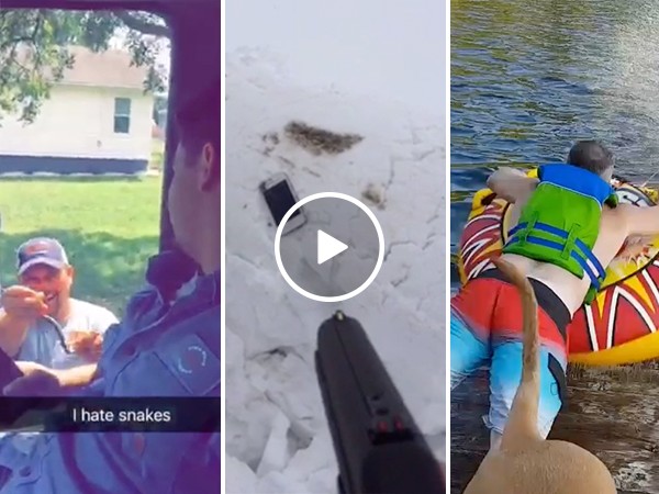 Snakes, guns and other Top 5 user Submits from September (Video)
