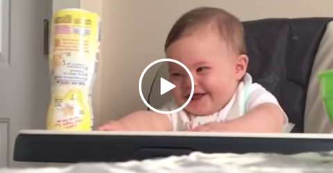 Baby Laughing At His Dad   Toddler Very Happy