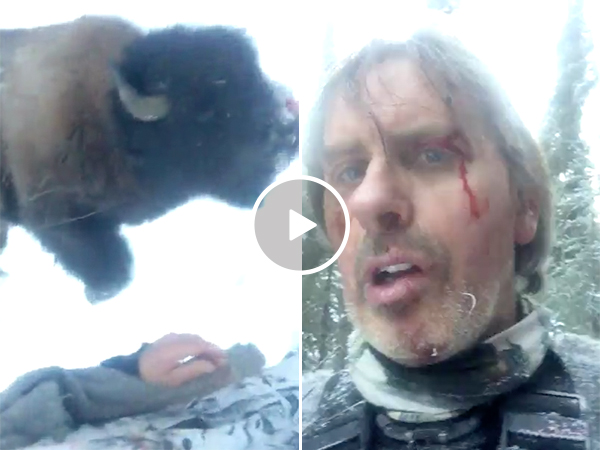 Hunter Takes Down a Buffalo After Being Charged