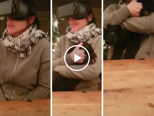 Scared mum with VR headset cuddles dogs rear end (Video)