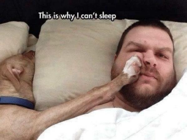 dont sleep on these memes 1 Dont sleep on these memes (44 photos)