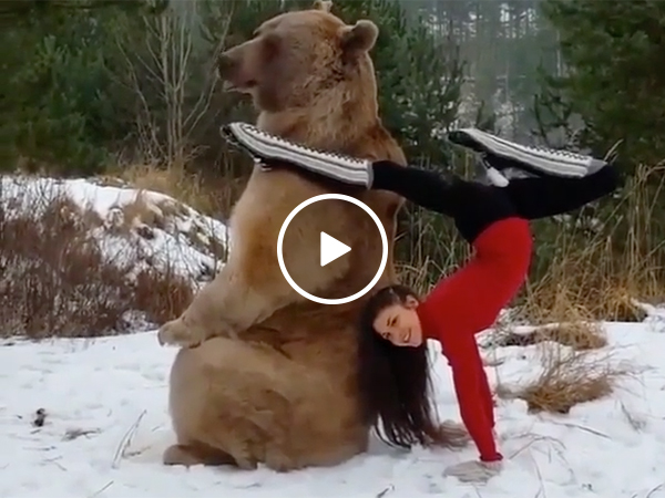 Dancing Girl Risks Her Life With A Huge Grizzly Bear In the Snow