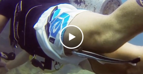 Pesky remora fish wants to attach to diver (Video)