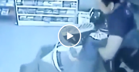 Robber gets spanked by shopkeeper (Video)