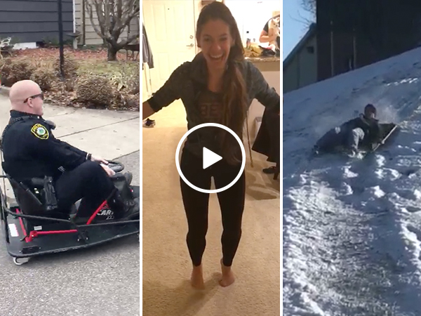 Go-carting cops, nut shots, and more top User Submits of January