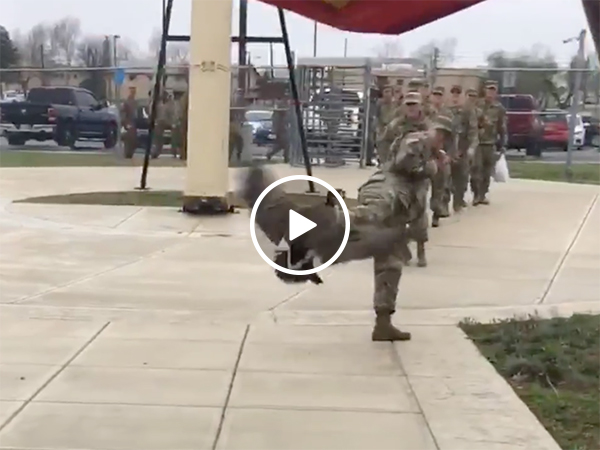 An angry goose attacking soldiers at a US Army base