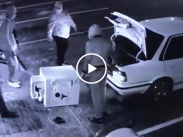 Group of thieves try to fit stolen safe in tiny trunk (Video)