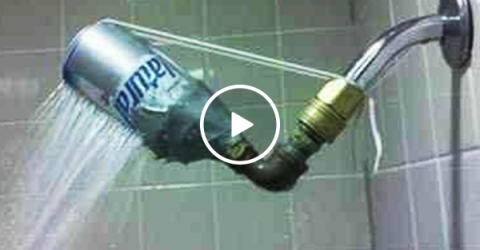 Man installs a shower head that defies gravity (Video)
