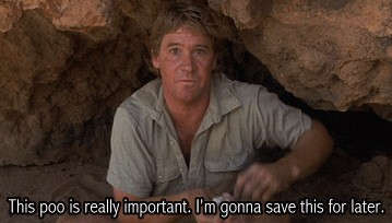 Steve Irwin Quotes And Gifs To Celebrate His Greatness Thechive