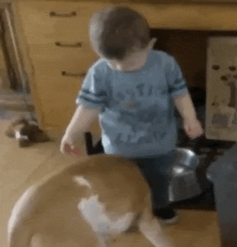 irrefutable proof that kids are just little drunk people xx gifs 78 Irrefutable proof that kids are just little drunk people (14 GIFs)