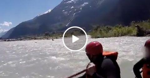 Grizzly Bear Attacks a Human on a River in Alaska