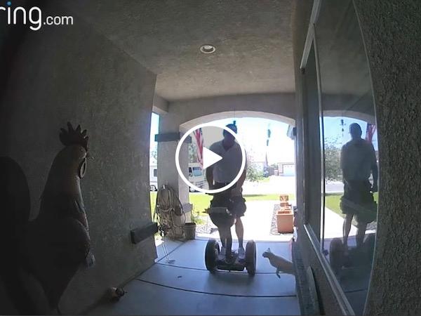 Security cat takes out a door-to-door salesman (Video)