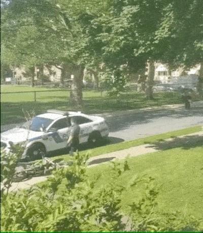 convenient cop gifs give me a justice boner xx gifs 1 2 Convenient cop GIFs give me a justice boner! (15 GIFs)