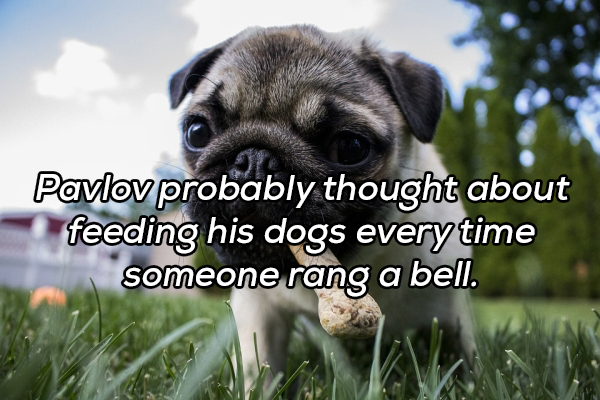 shower thoughts have me questioning everything 20 photos 13 Shower Thoughts have me questioning everything (20 Photos)