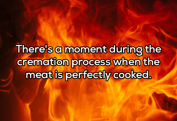 theres a moment during the cremation process copy Shower thoughts have me questioning everything! (19 Photos)