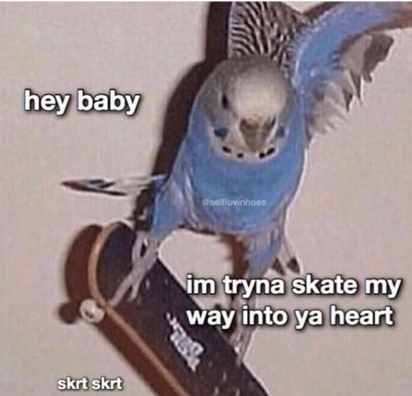 3176410 32 Dirty, flirtatious memes to send your better half (34 Photos)