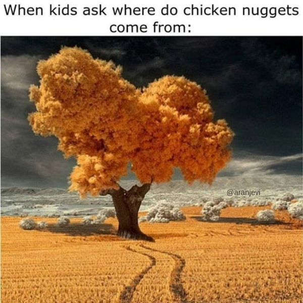 dear chicken nuggets i love you p s bring the sauce xx photos 1 Dear Chicken Nuggets, I love you. Lets get saucy! (37 Photos)