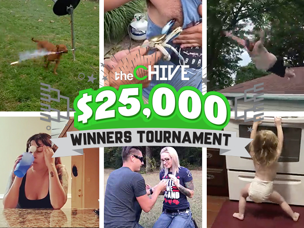 WINNERS TOURNAMENT Lead image 600x450 2 The $25,000 Winners Tournament continues with the third Battle Royal! (Vote Now)