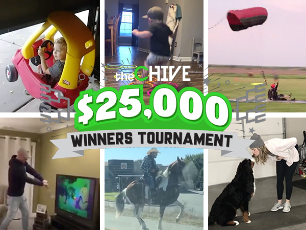 the 25000 winners tournament starts today with the first battle royal vote now 1 The $25,000 Winners Tournament starts TODAY with the first Battle Royal! (Vote Now)