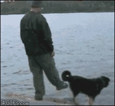 giphy 2020 05 28T155521.921 5 Karmas a real motherf%&ker, aint it? (17 GIFs)