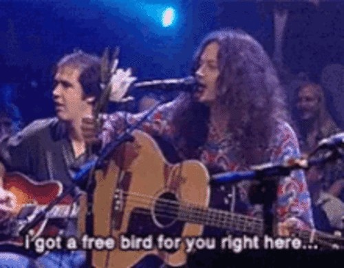 heres some petty revenge for that a hole that always wants freebird x gifs 6 11 Heres some petty revenge for that A hole that always wants Freebird (8 GIFs)