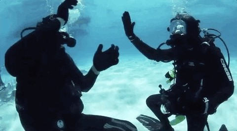 DivingTwitterStory1 12 Diving goes south in more ways than one in viral Twitter thread (14 Photos)