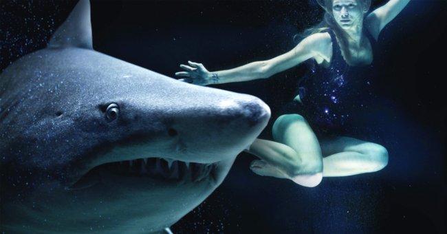 shark random ways youll die before a shark attack x gifs 13 SHARK!!! Random ways youll die before a shark attack (15 GIFS)