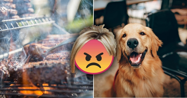 veteran gets pro revenge on karen who complained about his grilling guide dog training 1 Veteran gets pro revenge on Karen who complained about his grilling, guide dog training