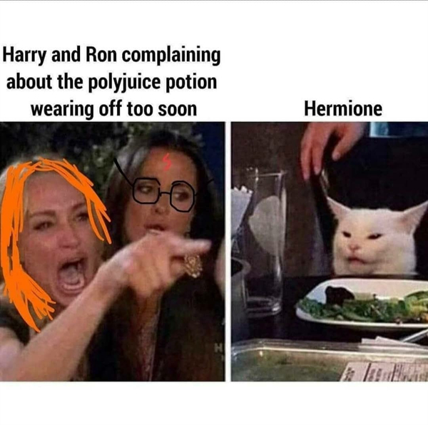 harry potter memes for some weasleys wizard wheezes 35 photos 32 Harry Potter Memes for some Weasleys Wizard Wheezes (35 Photos)
