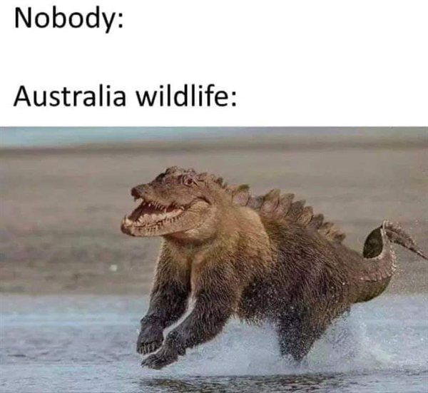 straya the perfect mix of hell yes hell no photos 19 Straya: The perfect mix of HELL YES & HELL NO! (29 Photos)